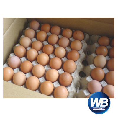 Chicken Eggs (Layer) 30 pcs 1016301