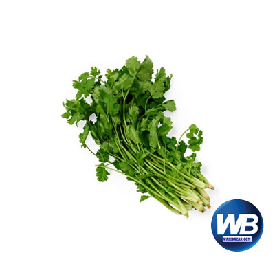 Coriander Leaves (Dhoniya Pata) 50 gm