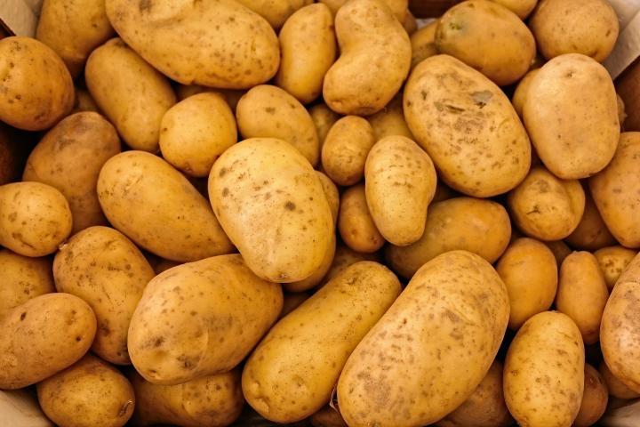 potato 50 kg