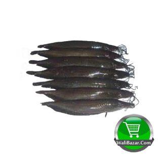 Shing Fish (After Cutting) 500 gm