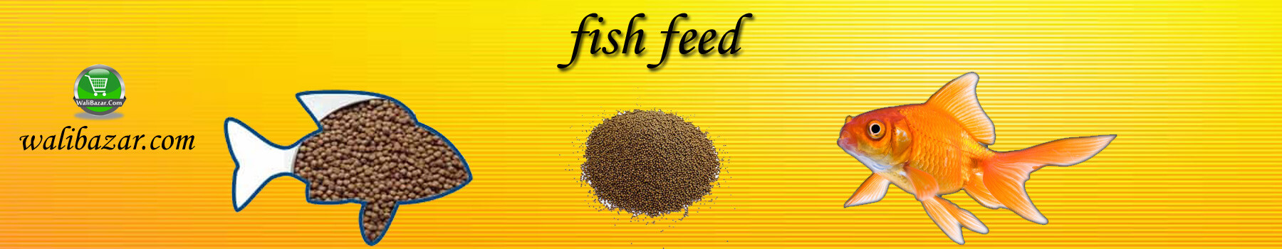 Fish feed of Bangladesh