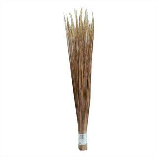 Big Broom Big (Sholarjaru)
