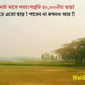 Land for sale in Kolatia, Keraniginj in Dhaka
