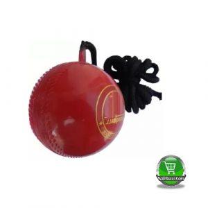 Plastic Cricket hanging ball